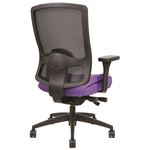 Prius 12221 Executive Office Chair Back