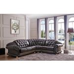 Apolo Brown Leather Sectional
